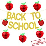 Back To School Banner Gold Glitter -Back to School Party Decorations Supplies -First Day of School Banner   Honeycomb Tissue Paper Apple Hanging Decorations -School Classroom Office Hanging Decor Sign