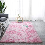 Softlife Fluffy Bedroom Area Rugs 4' x 6' Mordern Collection Rug Indoor Shaggy Carpet for Girls Kids Room Living Room Dorm Nursery Home Holiday Decor, Pink & White