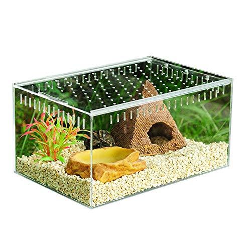 Motto.H - Terrario Reptil, Caja de reproducción acrílica...