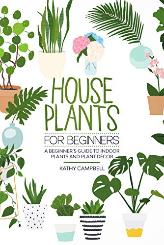 House Plants For Beginners A Beginner S Guide To Indoor Plants And Plant Decor Kindle Edition By Campbell Kathy Crafts Hobbies Home Kindle Ebooks Amazon Com