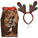 'Reindeer in Training' Dog Novelty Christmas Costume - Coat & Headband - Medium