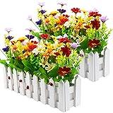 Plantes à fleurs artificielles - marguerites de couleurs mélangées dans un...