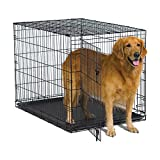 New World 42' Folding Metal Dog Crate, Includes Leak-Proof Plastic Tray; Dog Crate Measures 42L x 30W x 28H Inches, Fits Large Dog Breeds
