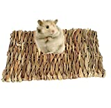 HEEPDD Hamster Lapin Tapis d'herbe, Petits Animaux de Compagnie...