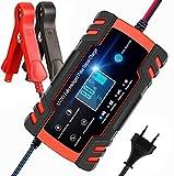 BUDDYGO Chargeur de Batterie, 12V 8Amp/24V 4Amp Booster Voiture Mainteneur...
