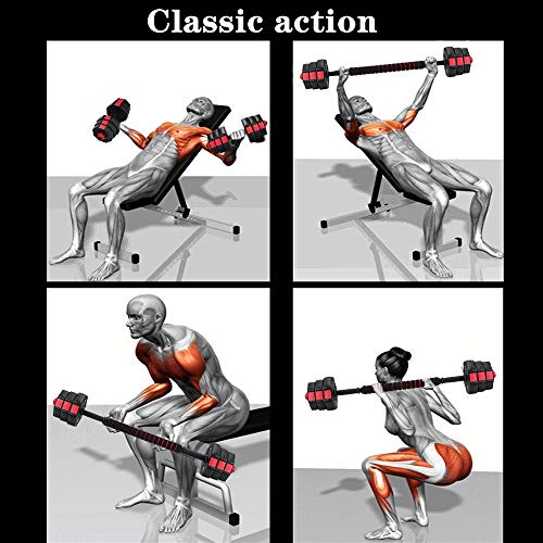 51na7Gipx L - Home Fitness Guru