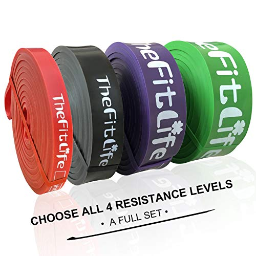 TheFitLife Elastici Fitness Bande di Resistenza - fasce elastiche fitness di assistenza al pullup, palestra in casa lo...