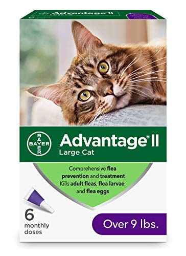 Advantage II 6-Dose Large Cat Flea Prevention, Flea Prevention for Cats, Over 9 Pounds