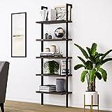 Nathan James Theo 5-Shelf Wood Ladder Bookcase with Metal Frame, 5-Tier, Warm Walnut/Black