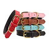 Aolove Basic Classic Padded Leather Pet Collars for Cats Puppy Small Medium Dogs (Pink, Medium)