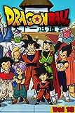 Dragon Martial arts Manga: Dragon-Ball-Full volume 18 (English Edition)