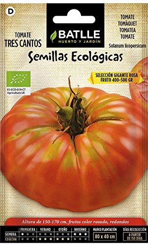 Semillas Ecológicas Hortícolas - Tomate tres cantos gigant