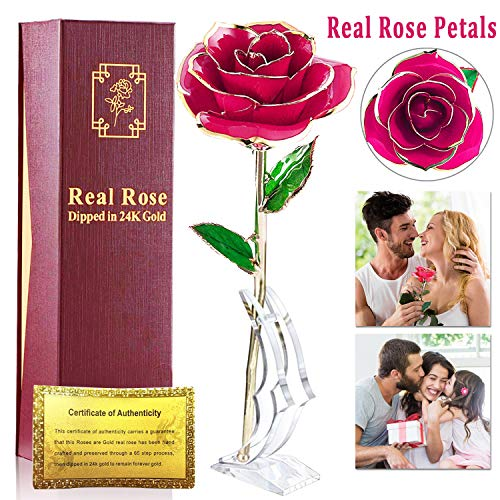 24k Gold Rose, Forever Gold Plated Rose 24k Gold Dipped Rose Everlasting Long Stem Real Rose with Exquisite Holder, Romantic Gift for Valentine's Day, Anniversary,Birthday Mother's Day-Hot Pink