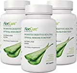 AloeCure® Advanced Formula for Immune Support, Acid Buffer for Bouts of Acid Reflux and Heartburn, Support Regularity, Helps Stomach Discomfort 3 Pack