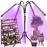 Aiyivve Lampe de Plante, 40W Lampe de Croissance pour Plantes 80LED Lampe...