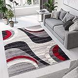 Tapiso Collection Dream Tapis de Salon Chambre Moderne Fin Couleur Gris Rouge...