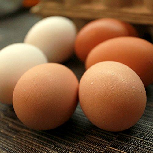 三種食べ比べミニセット18個入り(名古屋コーチンの卵6個+おいしい赤卵6個+おいしい白卵6個)