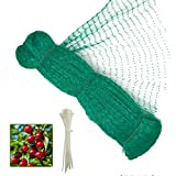 13 x 49 Feet Anti Bird Netting, Green Garden Netting Protect Fruit and Vegetables from Birds and...