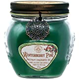 Winterberry Pine 17 oz Jar Candle -Holiday Scented Gift by Way Out West- Long Lasting Soy Wax Blend - Made in USA