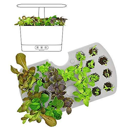 AeroGarden 800297-0200 (2018) Seed Starting System for Harvest...