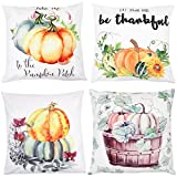 Autumn Pumpkin Fall Decorative Throw Pillow Covers 18 x 18 Inch Set of 4,ZUEXT Cotton Blend Square Farmhouse Pillowcases Cushion Cover for Car Bed Couch Patio Decor,Halloween Thanksgiving Pillow case