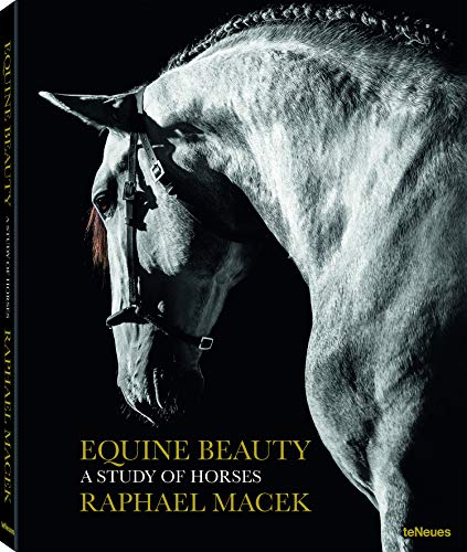 EQUINE BEAUTY SMALL (Photographer)