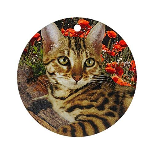 Delia32Agnes Bengal Kitten Christmas Ornaments Porcelain Ceramic Round 3 Inches Ornament Christmas Tree Decorations