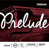 D'Addario Bowed Jeu de cordes pour violoncelle D'Addario Prelude, manche...