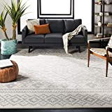 Safavieh Adirondack Collection ADR107B Rustic Boho Non-Shedding Stain Resistant Living Room Bedroom Area Rug, 9' x 12', Ivory / Silver
