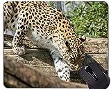 Alfombrilla de ratón con Borde de Bloqueo, Familia de Leopardo Gato...