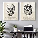 WIOIW Vintage Human Anatomy Skull 3D View Skeleton Science Illustration Canvas Painting Wall Art Poster Medical School Clinic Dormitorio Sala de Estar Decoración para el hogar