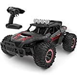 tech rc Car 1:16 Scale, Remote Control Car Off-Road RC Trucks 2.4 GHz with 2 Rechargeable Batteries,...