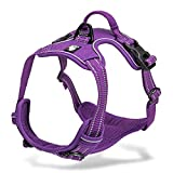 Chai's Choice Best Outdoor Adventure Dog Harness. 3M Reflective Vest with Handle and Two Leash Attachments. Caution Please Use Sizing Chart at Left Before Ordering! Matching (X-Large, Purple)