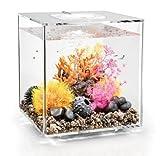 biOrb Cube 30 Aquarium with LED - 8 Gallon, Transparent