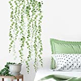 RoomMates RMK3903SCS String Of Pearls Vine Peel And Stick Wall Decals,green, white,2 Sheets at 9 inches x 36.5 inches