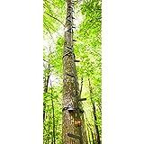 Guide Gear 20' Climbing Sticks