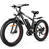 Speedrid Electric Bike Fat...