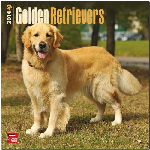 Golden Retrievers 2014 Wall Calendar