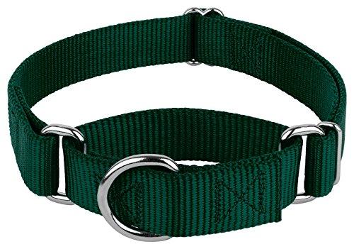 Country Brook Design - Martingale Heavyduty Nylon Dog Collar - Green - Medium