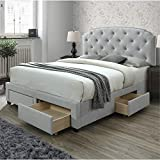 DG Casa Argo Tufted Upholstered Panel Storage Bed, Queen in Platinum Fabric
