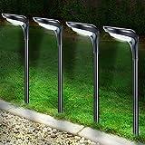 Litake Solar Pathway...image
