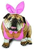 Rasta Imposta Hunny Bunny Dog Costume, 3X-Large