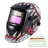 iMeshbean Solar Auto Darkening TIG/MIG/MAG Welding Helmet Flame Skull Eagle Design USA Seller (Lucky Skull)