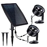 LED Solar Pond...image