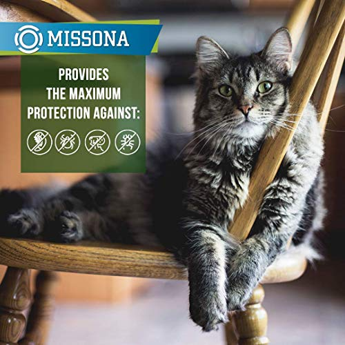 Missona Collar for Cats - 8 Months Prеvеntion for Cats Kitten Collar with Essential Oil Adjustable Waterproof Cat Treatment