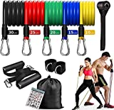 Resistance Bands with Handles,Exercise Bands Set with Door Anchor, Handles,Carry Bag, Legs Ankle Straps,Home Workout Equipment for Men Women for Resistance Training, Physical Therapy,ZOERAX