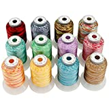 New brothread 12 Colors Variegated Polyester Embroidery Machine Thread Kit 500M (550Y) Each Spool for Brother Janome Babylock Singer Pfaff Bernina Husqvaran Embroidery and Sewing Machines-Assortment2