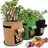 Tenrany Home Sacchetti per Coltivazione di Patate, 3 Pack 10 Galloni Plant Grow Borse, Traspirante Sacchi di Tessuto Non Tessuto per Coltivare Ortaggi, Patate e Carote ECC (Marrone + Verde + Nero)