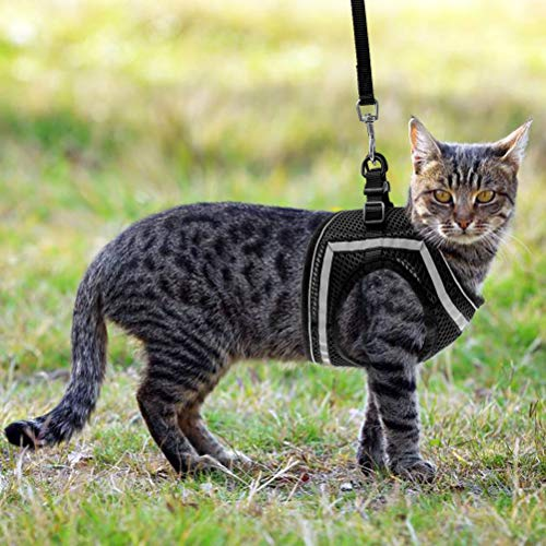 PUPTECK Breathable Cat Harness and Leash Set - Escape Proof Cat Vest Harness, Reflective Adjustable Soft Mesh Kitty Puppy Harness, Easy Control for Outdoor Walking