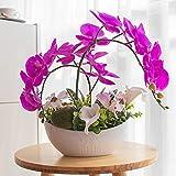 YILIYAJIA Artificial Phalaenopsis Orchid Bonsai Fake Flowers with Vase Arrangement 7 Head Waterproof PU Phalaenopsis Bonsai for Home Table Decor (Style 4, White Vase)